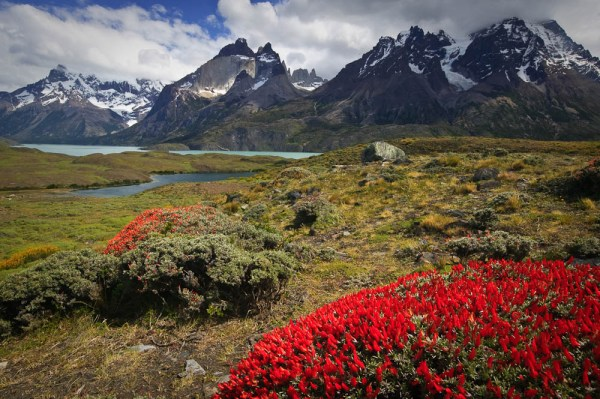 Nordenskjöld Lake, Torres Del Paine National Park, Chile. Image Copyright Joe Decker