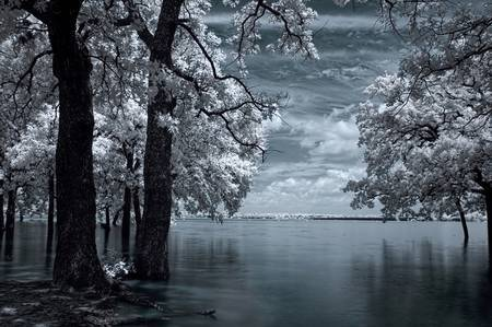 infrared - inside by mike irwin
