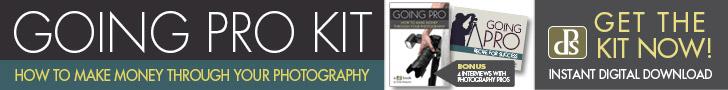Digital Photography School Resources: Going Pro Ebook