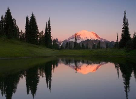 Rainier Alpenglow by Mike Dawson