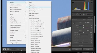 How to Remove Sensor Dust With Lightroom