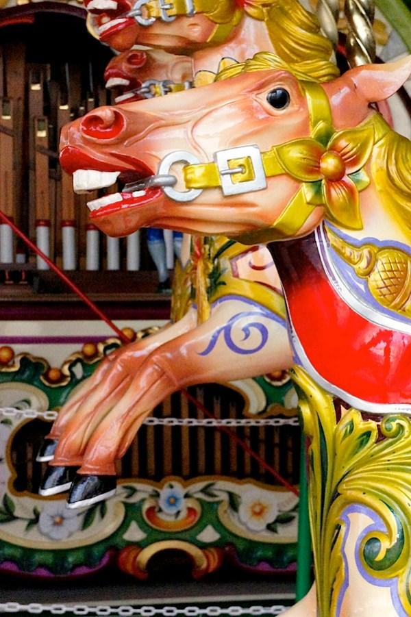 Carousel horses 3 ISO 12800.JPG