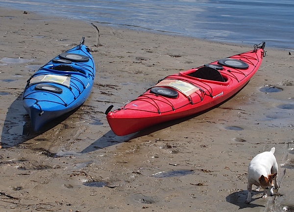 Canoes 1.jpg