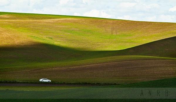 Landscape Composition 99.jpg