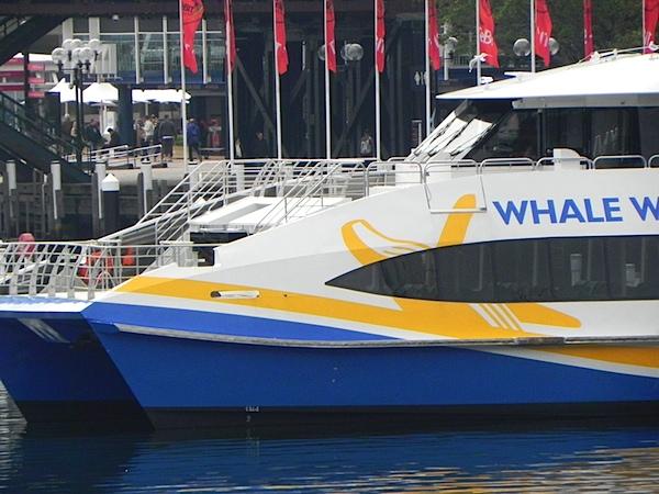 Darling Harbour tele.JPG