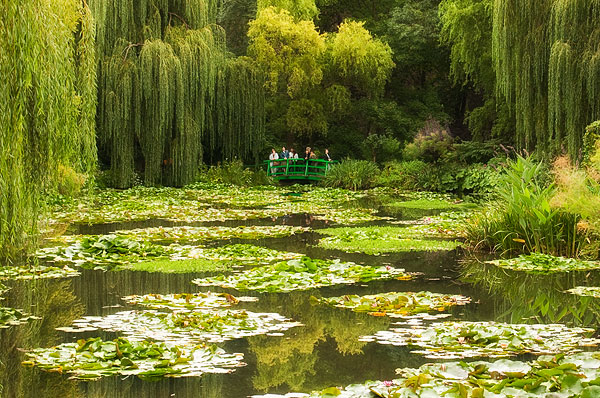 Image: Monet's Lily Pond at Giverny, France. There are several visual elements in this image which d...