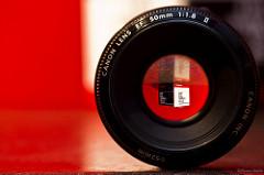 This Week in the Digital Photography School (16-22 Jan '11)
