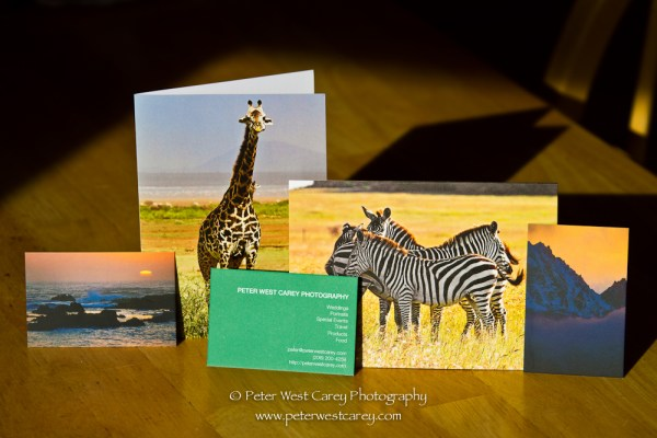 Moo Business and Greeting Cards [REVIEW]