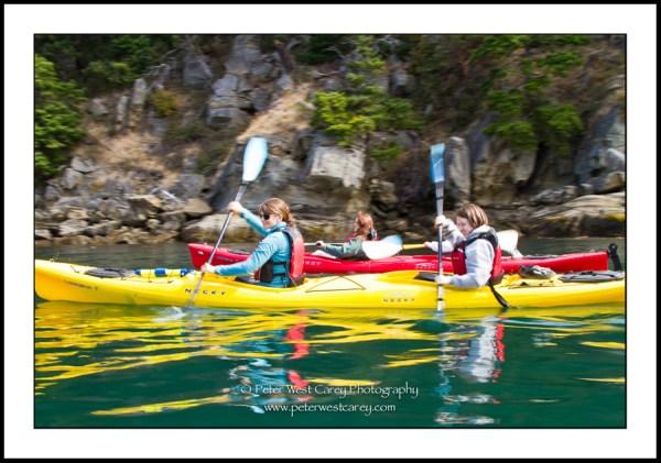 Image: Kayaking The San Juan Islands - Washington, USA