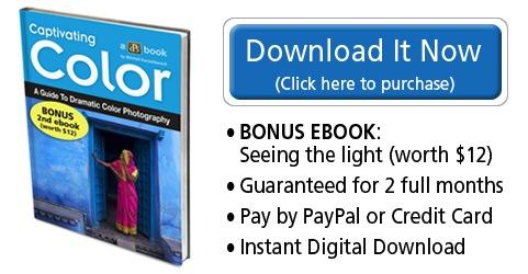 Download it Now - Color_bonus.jpg