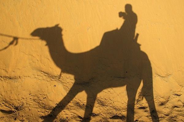 Self Portrait - Camel Ride - Near Aswan, Egypt - Copyright 2010 Ralph Velasco.jpg