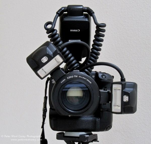 Macro Lighting Advantages Of The Canon Twin Lite MT-24EX
