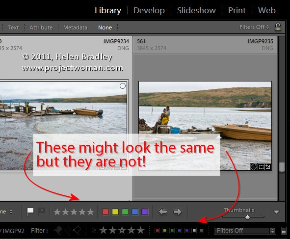 Lightroom Toolbar: What you Need to Know
