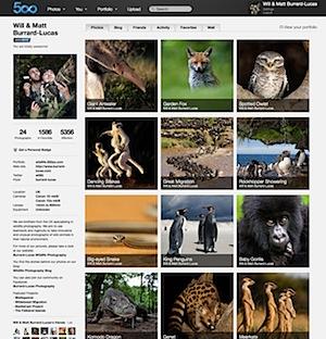500px-profile.jpg