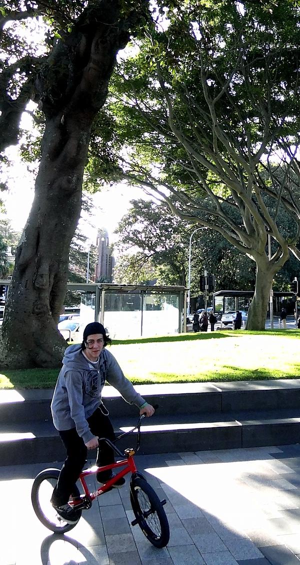 Park and skateboarder.JPG