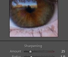 Sharpening in Lightroom 3