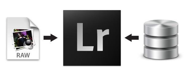 Understanding the Lightroom Catalog and File Management System