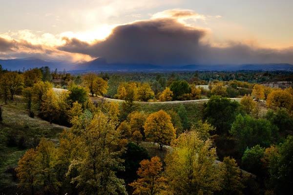 Autumn Oaks (Potpourri).jpg