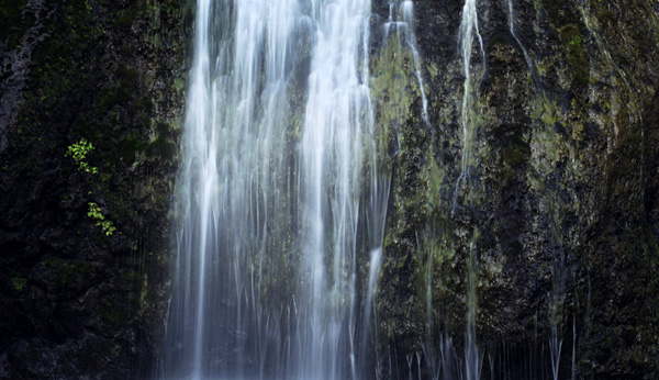 Image: I used a shutter speed of 1/2 second to blur the water in this photo of a waterfall.
