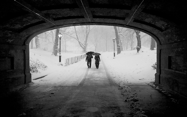 Couple in Snowstorm, Central Park.