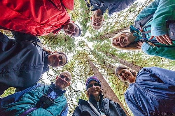 ISD AK-Hiking grp under towering trees.jpg