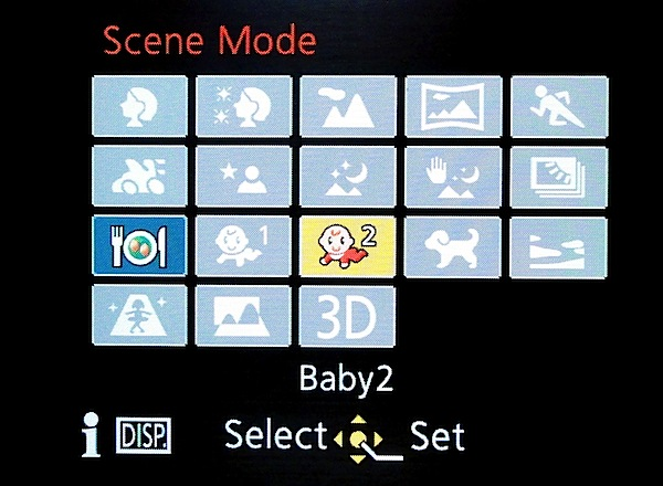 Panasonic Lumix FZ60 Scenes.jpg