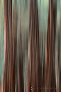 Motion Blur Applied