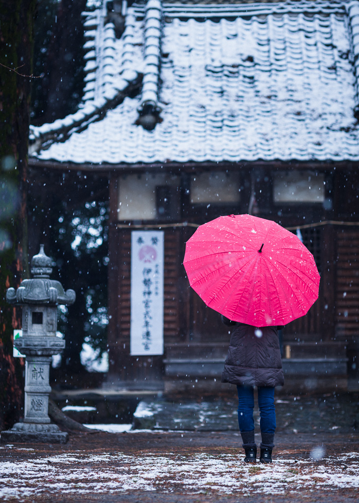Japanese Temple in the Snow - Natural Color