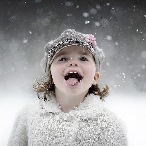 The Snowflake Taster