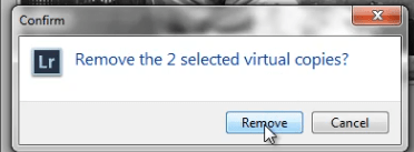 04_confirm-remove-virtual-copies