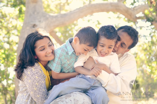 Annie Tao Photography Bay Area East Bay lifestyle family photography family laughing on tree branch with sun flare