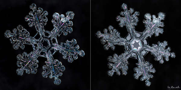 How to Photograph Snowflakes 3