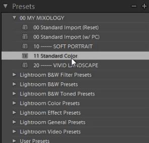 10-lightroom-4-presets-panel-standard-color-soft-portrait-preset
