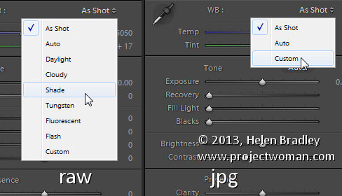 Lightroom white balance 1