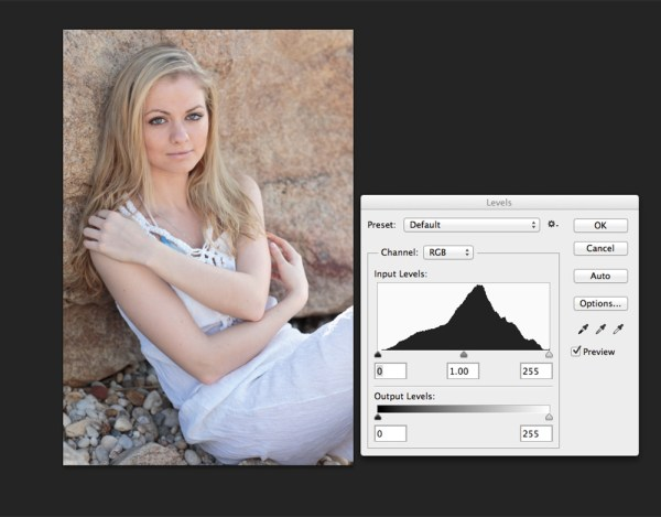 This portrait shows more midtones than anything else, so we see more of a classic peak near the center of the histogram, with the pixels falling off as they get to the edges of the histogram. You can see that neither the highlights or shadows are clipped .