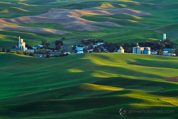 Steptoe Butte in the Palouse Hills of Washington, USA, by Anne McKinnell.