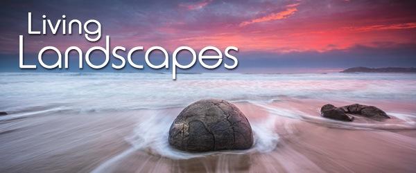 Landscapes_600x250px.jpg
