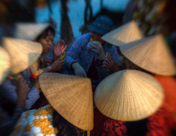 Morning Meeting at the Fish Market in Vietnam