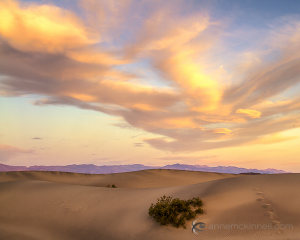 Mesquite Sand Dunes, Death Valley National Park, California, by Anne McKinnell