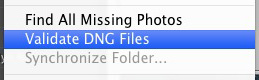 Using DNG to Make Lightroom Faster