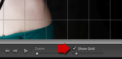 Lightroom 5 Loupe View