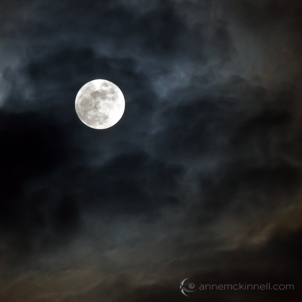 Moon Photography: Just the Moon, by Anne McKinnell