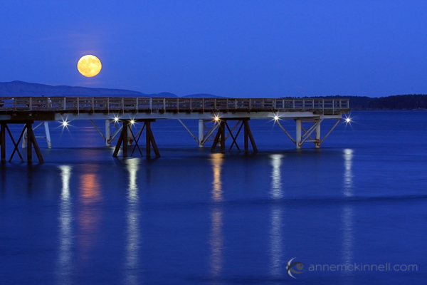 Moon Photography: Long Nights Moon by Anne McKinnell