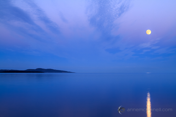 Moonrise over the ocen in Sidney, British Columbia, by Anne McKinnell