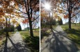 Using Sun Flares and Starbursts to Create Stunning Images