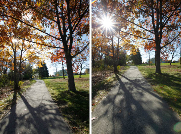 McEnaney sunflare compare