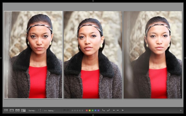 Comparing Images with Lightroom 5's Survey View