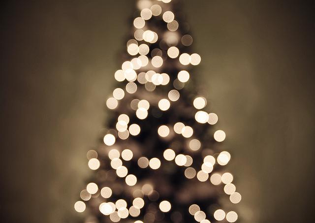 Christmas Tree Lights Photography