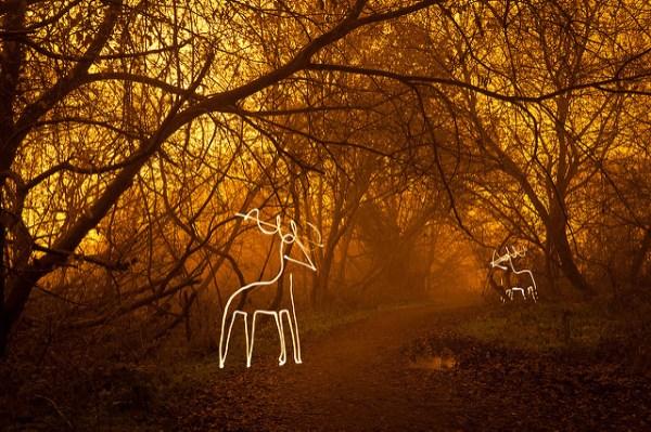 25 Wonderful Christmas Light Painting Images