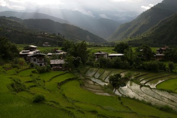 Travel Photography Tips Landscapes Sunset Over Rice Paddies  Punakha Bhutan  Copyright 2013 Ralph Velasco